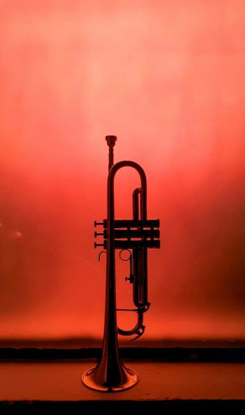 trabajo trompetista madrid